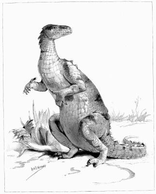 Typer av dinosaurer som levde