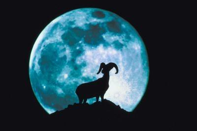 I Science, Hvordan månens faser avhenge av den relative posisjonen til solen, månen og jorden?