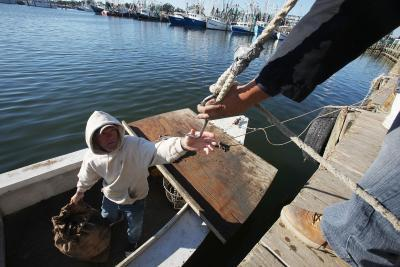 Hvordan bygge en Oyster Dredge