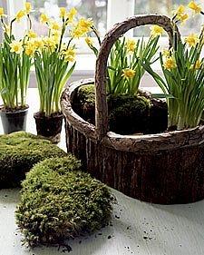 Hvordan lage en Spring Flower Basket