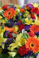 Hvordan sende blomster til Øst-Afrika