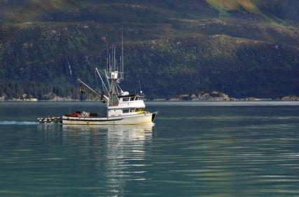 Alaska Dungeness Crab Fishing