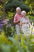 Hvordan hjelpe foreldre feire 50 års ekteskap