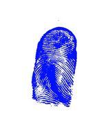 Interaktive Forensic Lessons