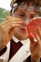 Hvordan lage et hjem Laboratory
