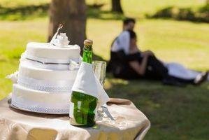 Cake & Champagne Bare Wedding Mottak Ideas