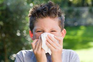 Hvordan Minimer Barne Germs