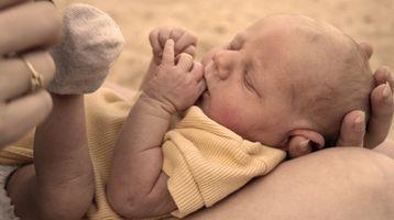 Bayley Scales of Infant Development Training