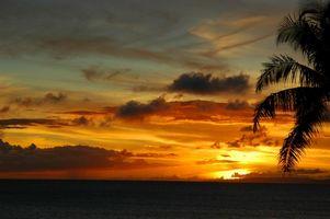 Ideer for et bryllup i Maui, Hawaii
