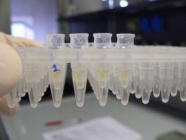 Rollen som vaskemiddel i biologiske eksperimenter
