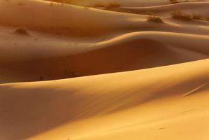 Ørkener på jorden