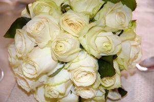 Billig Wedding Bouquet Ideer
